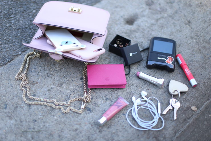 whats in my bag luisa lion rosa valentino