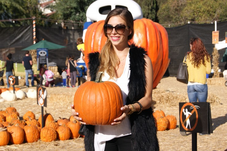 pumpkin patch beverly hills